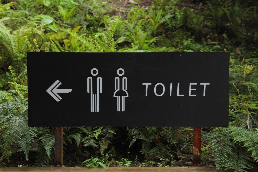 Toaleta W Restauracji Czy Lokalu Gastronomicznym Ilość